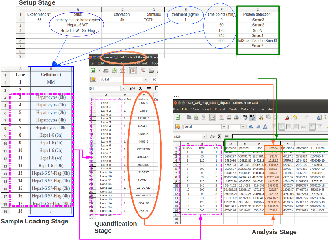 parts of an excel spreadsheet 2013