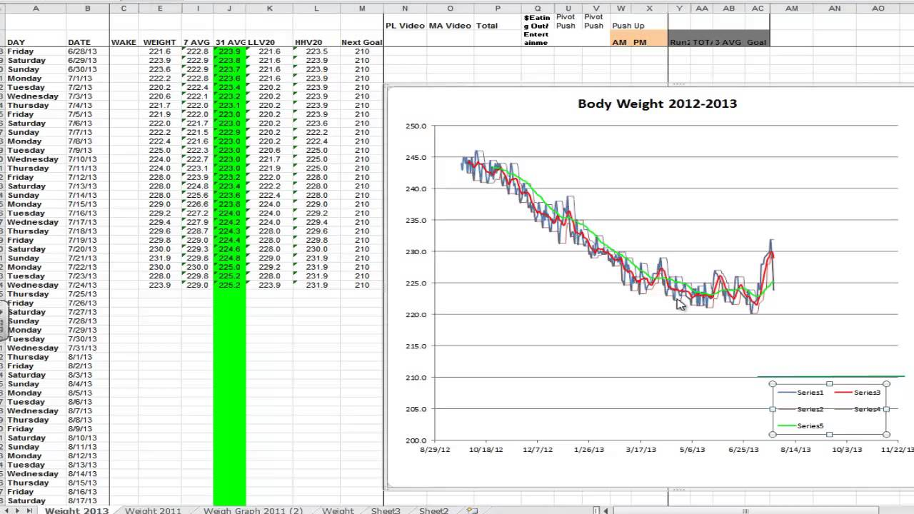excel weight loss chart stones pounds
