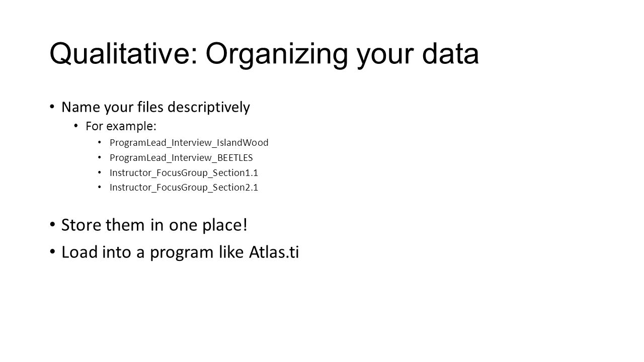 how is data organized in a spreadsheet application